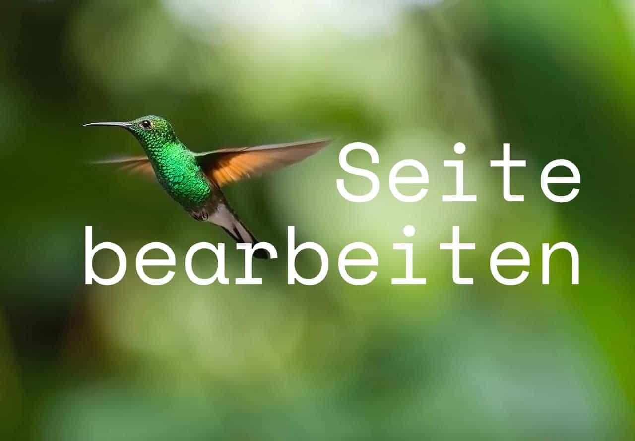 Seite-bearbeiten-Kolibri-Solutions.jpg